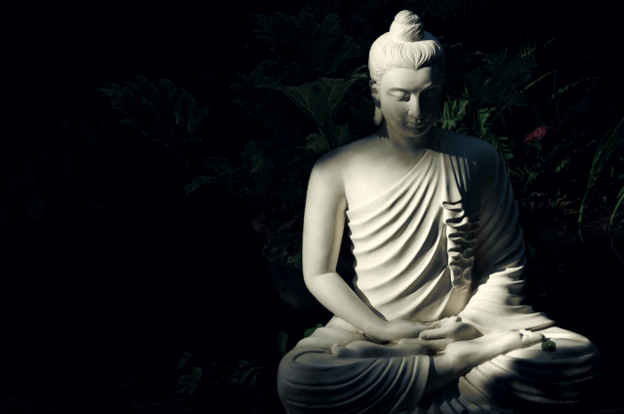 Why You Should Meditate – A Beginner's Guide to Meditation