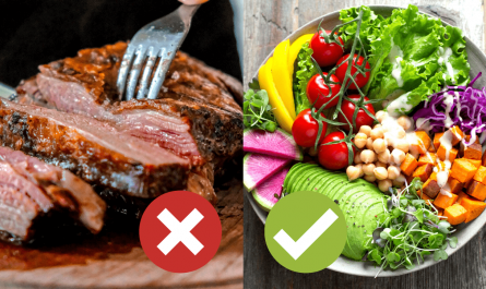 Meat vs Plant-based diet